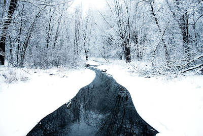 Photograph - Winter Walk by Angela King-Jones