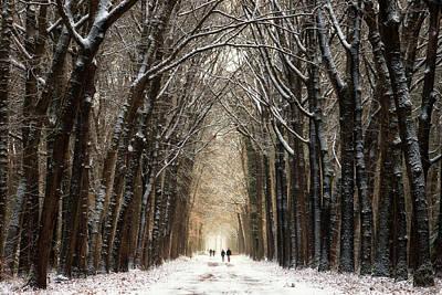 Winter Walk II Art Print by Martin Podt
