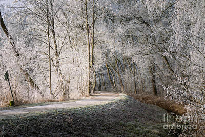 Photograph - Winter Walk In Bavaria by Juergen Klust