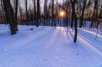 Photograph - Winter Walks Continue by Craig Szymanski