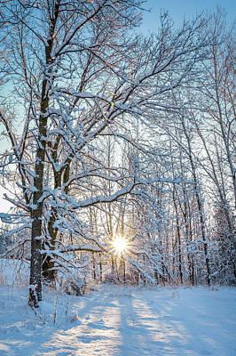 Photograph - Winter Warm Spot by Bill Pevlor