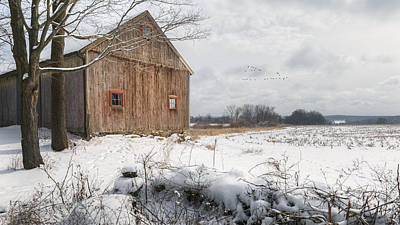 Photograph - Winter Warmth by Bill Wakeley
