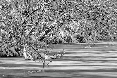 Photograph - Winter Water by Travis Rogers