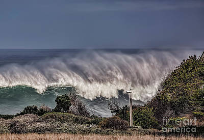 Photograph - Winter Waves by Shirley Mangini