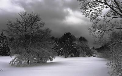 Photograph - Winter Weather by Sheila Mcdonald