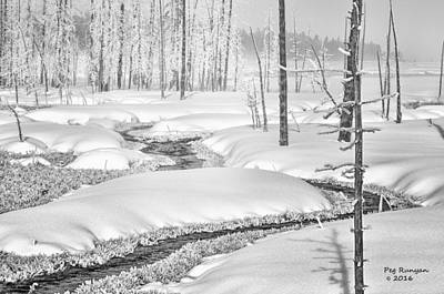 Photograph - Winter White In Black And White by Peg Runyan