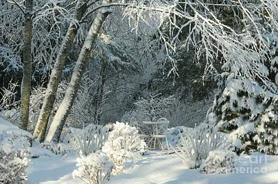 Photograph - Winter White New England Bright by Barbara S Nickerson