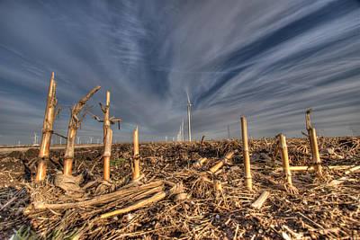 Indiana Winters Digital Art - Winter Wind In Corn Field by Stephan Mazurek
