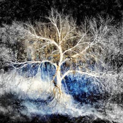 Photograph - Winter Witch's Night by Janine Riley