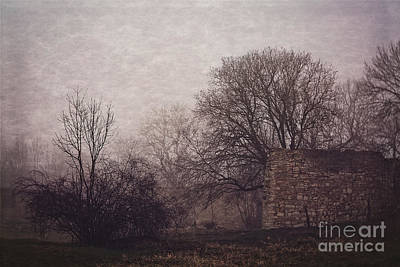 Photograph - Winter Without Snow by Mandy Tabatt