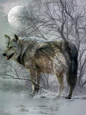 Digital Art - Winter Wolf by Ali Oppy