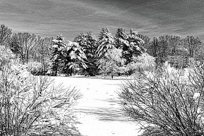 Photograph - Winter Wonderland 19 by Allen Beatty