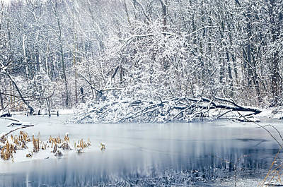 Nature Center Pond Photograph - Winter Wonderland 2 by SharaLee Art