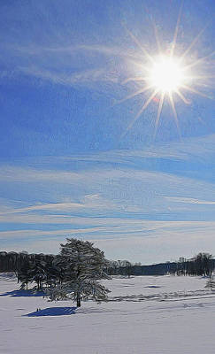Photograph - Winter Wonderland 24 by Allen Beatty