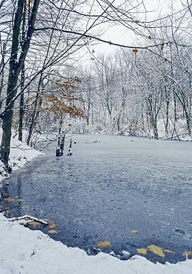 Nature Center Pond Photograph - Winter Wonderland 3 by SharaLee Art