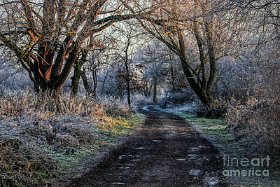 Fordwich Photograph - Winter Wonderland 7 by Lytton Images