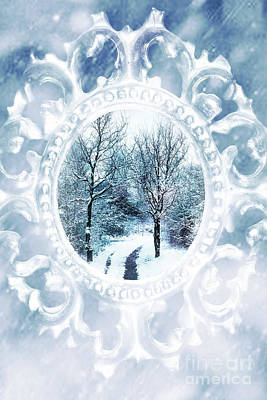 Winter Trees Photograph - Winter Wonderland by Amanda Elwell