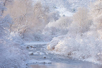 Photograph - Winter Wonderland - Colorado by Darren White