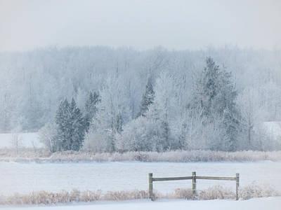 Winter Wonderland Photograph - Winter Wonderland by Emma Gossett