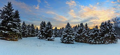 Photograph - Winter Wonderland  by Emmanuel Panagiotakis