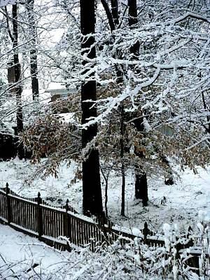Photograph - Winter Wonderland by Fareeha Khawaja