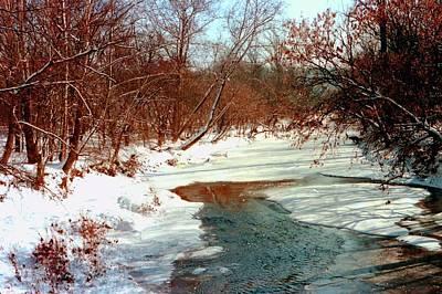 Photograph - Winter Wonderland by Gary Wonning