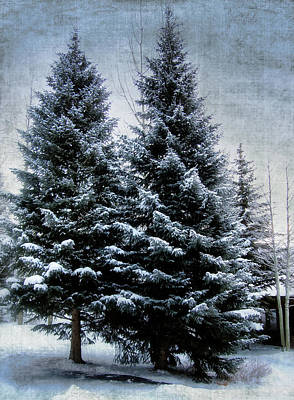 Photograph - Winter Wonderland by Jim Hill