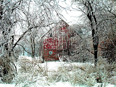 Pasture Digital Art - Winter Wonderland by Julie Hamilton