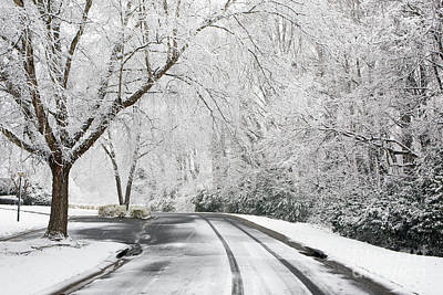 Photograph - Winter Wonderland by Kevin McCarthy