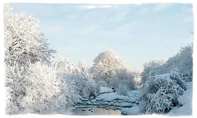 Winter Wonderland Print by Mark Denham