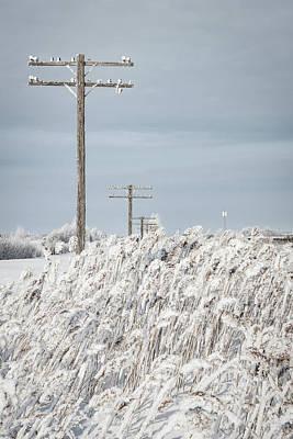 Photograph - Winter Wonderland by Steve Boyko