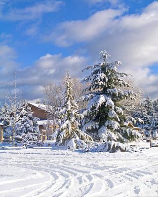 Winter Wonderland Art Print by Wilbur Young