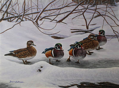 Wood Duck Painting - Winter Wood Ducks by Bruce Dumas