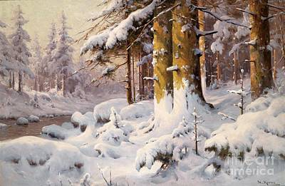 Mora Painting - Winter Woodland In The Sunlight by Celestial Images