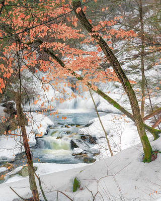 Photograph - Winter Woodland Stream by Bill Wakeley