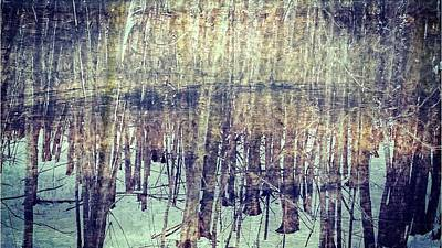 Reflecting Water Mixed Media - Winter Woods Aglow by Maria Dryfhout