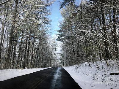 Photograph - Winter Woods  by Kerri Farley
