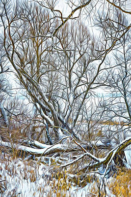 Photograph - Winter Woods On A Stormy Day - Paint by Steve Harrington