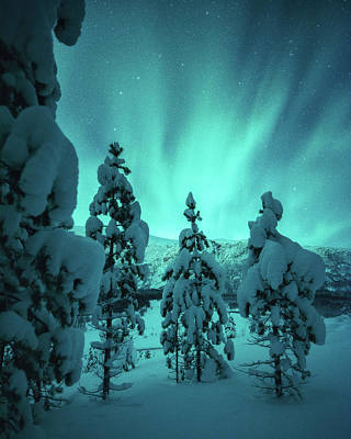 Winterland Art Print by Tor-Ivar Naess