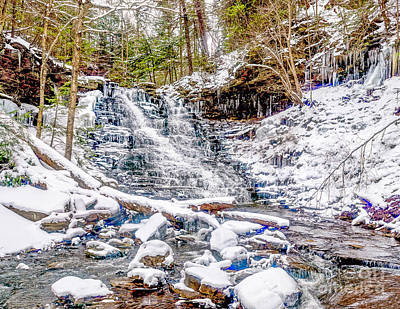 Photograph - Winter On The Falls Trail In Ricketts Glen Pa by Nick Zelinsky