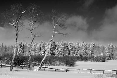 Art Print featuring the photograph Winters Allure.. by Al Swasey
