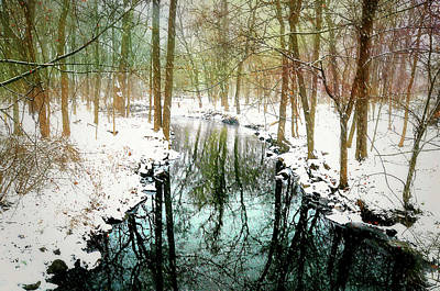 Nature Center Pond Photograph - Winter's Chill by Diana Angstadt