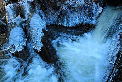 Photograph - Winter's Chill by Sean Sarsfield