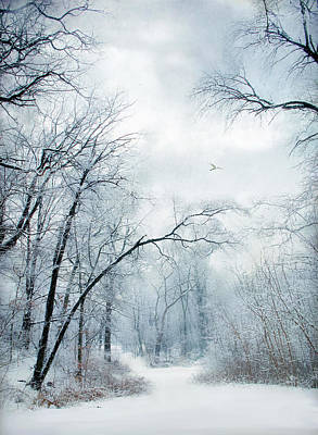 Snow Digital Art - Winter's Cloak by Jessica Jenney