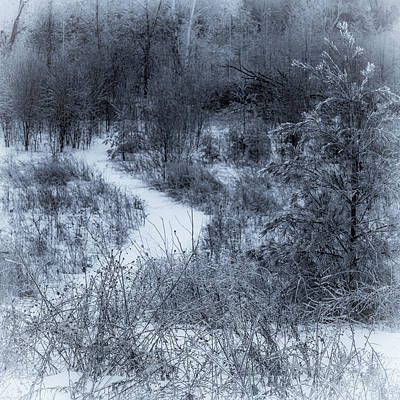 Photograph - Winters Eve by David Heilman
