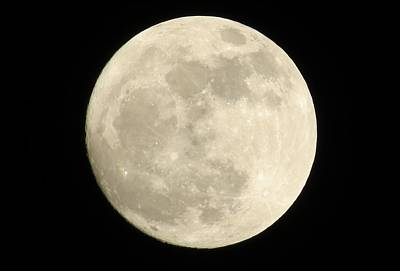 Photograph - Winter's Full Moon by Kyle West