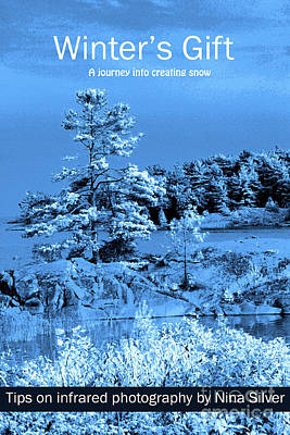 Photograph - Winter's Gift by Nina Silver