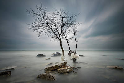 Lakefront Wall Art - Photograph - Winter's Grip by Josh Eral