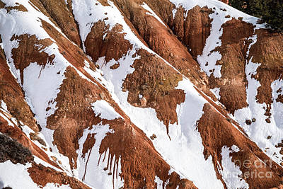 Photograph - Winter's  Kiss - Bryce Canyon   by Sandra Bronstein