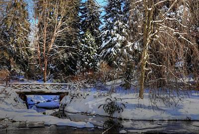 Photograph - Winters Landscape II by Carol Montoya
